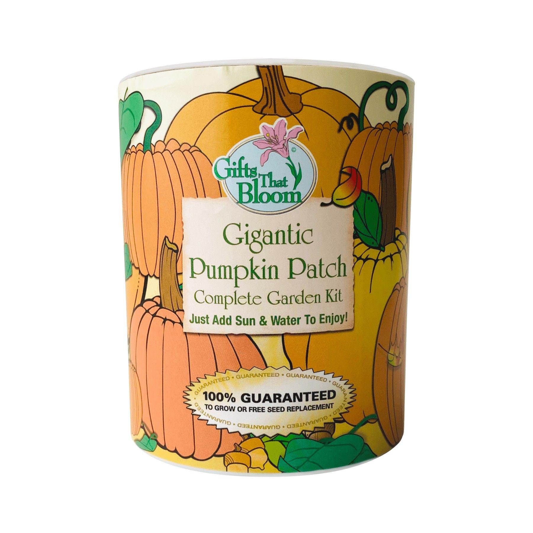 World Largest pumpkin Garden pumpgc